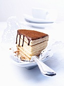 A slice of Baumkuchen (German layer cake) on a cake slice