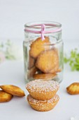 Coconut cakes and madeleines in a jar