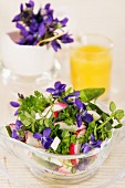Spring salad with radishes and violets