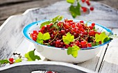 Redcurrants with leaves in a bowl