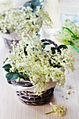 Elderflowers in baskets