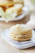 A macaroon filled with elderflower cream