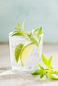 Gin & tonic with lemon verbena