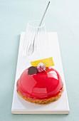 Individual raspberry mousse torte