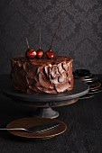 Chocolate cake with chestnut cream