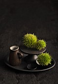 Green chestnuts in their cases on an anthracite cake stand