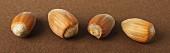 Four hazelnuts