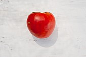 A tomato of the variety 'Gruschovka'