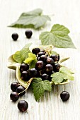 Blackcurrants with leaves in a leaf-shaped bowl
