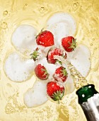 Sparkling wine being poured over strawberries