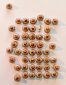 Hazelnut macaroons