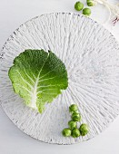 A savoy cabbage leaf and Brussels sprouts