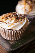 Brownie Cup Cake topped with Pecan and Caremel