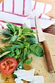 Basil, tomatoes and mozzarella