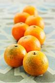Organic mandarins