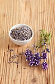 Lavender flowers (fresh and dried) on a wooden surface