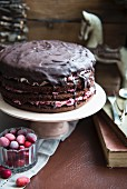 Chocolate layer cake with cranberries, for Christmas