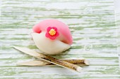 Wagashi camellia (tsubaki), a Japanese sweet