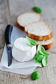 Goat's cheese, basil and slices of white bread