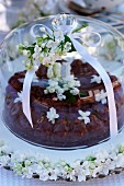 Chocolate cake with white lilac blossoms under a glass cake cover dome on a garden table