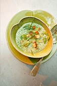 Herb foam soup with croutons