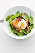Spinach salad with bacon and egg