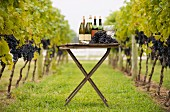 Wine bottle, grapes and glasses on table in vineyard