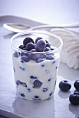 Yoghurt with fresh blueberries