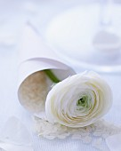 Rice and white ranunculus in paper cone