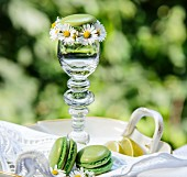 Green macaroons with daisies and a glass of a garden table