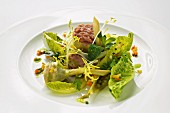 Stuffed artichokes with veal tartar and cos lettuce