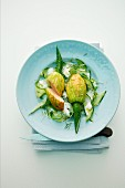 Stuffed courgette flowers on cucumber strips with salmon