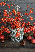 Sprigs of rosehips in a vase