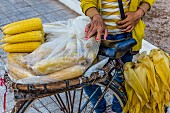 A sweetcorn seller with a bike (Phnom Penh, Cambodia)