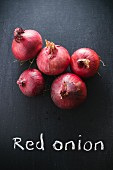 Red onions on a chalkboard above the words 'Red onion'