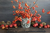 Sprigs of rosehips, apples and chestnuts