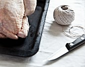 A ready-to-roast organic chicken with a knife and kitchen twine (detail)
