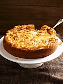 Cheese cake with slivered almonds, sliced