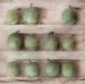 Greengages on a shelf