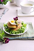 Pancakes with lettuce and fried quail's eggs