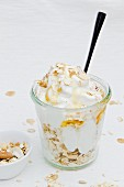 Frozen yogurt with honey and oats