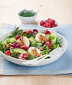 Mixed leaf salad with avocado, raspberries, goat's cheese, dill and pine nuts