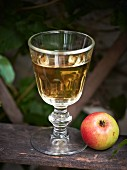 Cider in a glass tankard