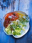 Salatteller mit verschieden-farbigen Tomaten, Gurke und Schafskäse
