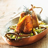 Roast pheasant with chicory