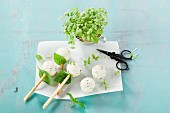 Cake pops with cream cheese and herbs