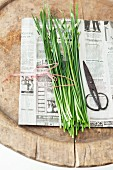 Fresh Thai garlic chives