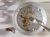 An empty salad plate