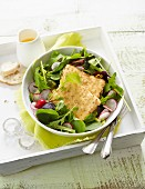 Fried feta with a spinach salad and radishes