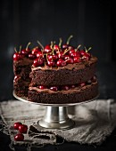 Creamy chocolate cake with fresh cherries